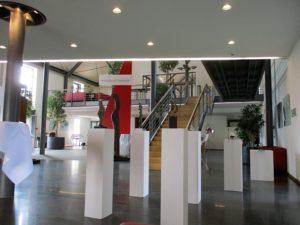 Aufbau & Hängen Hoyos-Vogel